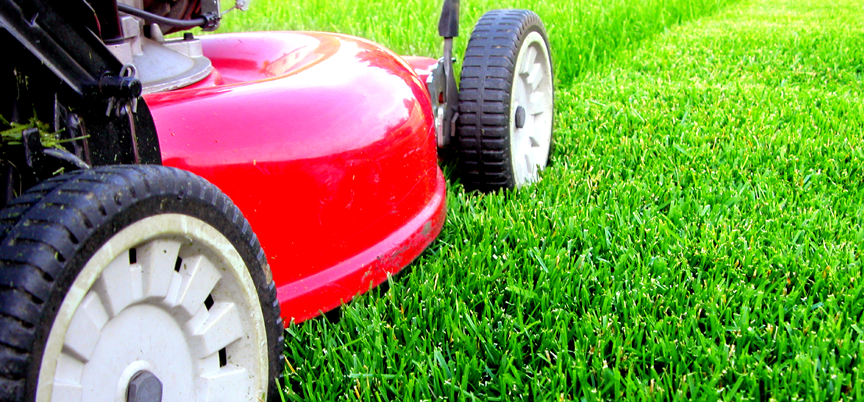 Pope lawn care landscaping lawn care pope lawn care for Lawn and garden maintenance services